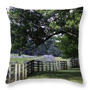 Farmland Shade Appomattox Virginia Throw Pillow