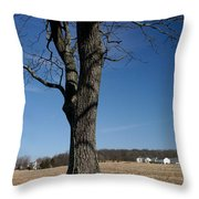 Farmland Versus Development Throw Pillow by Karen Lee Ensley