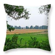 Farmland View Throw Pillow