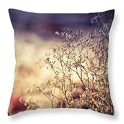 Fascinating Life Of Grass. Painting With Light Throw Pillow