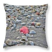 Fashion Satement Throw Pillow