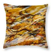 Fast Flowing Throw Pillow