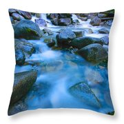 Fast-flowing River Throw Pillow