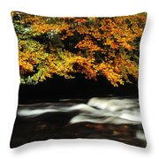 Fast Flowing Water And Fall Colours Throw Pillow