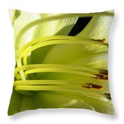 Favorite White Lily Throw Pillow