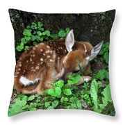 Fawn 2292 Throw Pillow