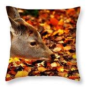 Fawn In Autumn Throw Pillow