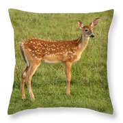 Fawn Ventures Out  Throw Pillow