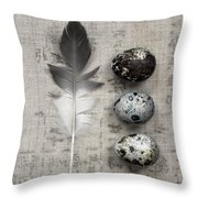Feather And Three Eggs Throw Pillow