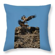 Feather Fluster Throw Pillow