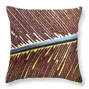 Feather Or Fern Throw Pillow