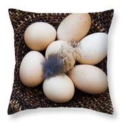 Feathered Eggs Throw Pillow