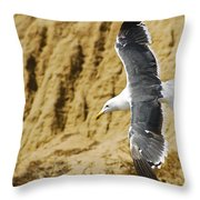 Feathered Friend Cruising Throw Pillow