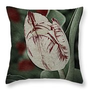 Feathered Markings Throw Pillow