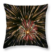 Feathers Of Fire Throw Pillow