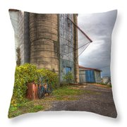 Feed And Farm Supplies Throw Pillow