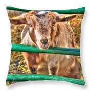 Feed Me Or I Will Eat You Lol Throw Pillow