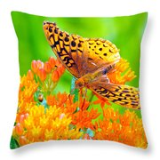 Feeding Butterfly Throw Pillow