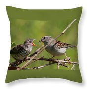 Feeding Time Throw Pillow by Bruce J Robinson