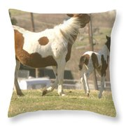 Feeling Frolicsome  Throw Pillow