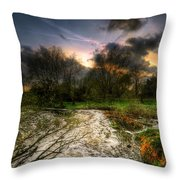 Feeling Over The Weather Throw Pillow