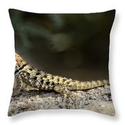 Female Desert Spiny Lizard  Throw Pillow