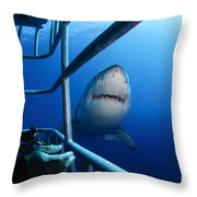 Female Great White And Underwater Throw Pillow
