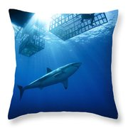 Female Great White With Cages Throw Pillow