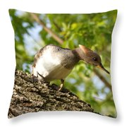 Female Hooded Merganser Throw Pillow