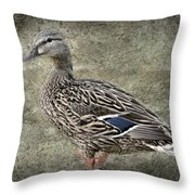Female Mallard Duck Low Saturation Throw Pillow