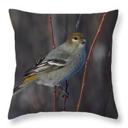 Female Pine Grosbeak Throw Pillow