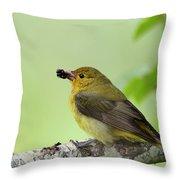 Female Summer Tanager Throw Pillow