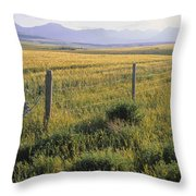 Fence And Barley Crop, Near Waterton Throw Pillow