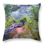 Fence To The Blueberries Filtered Throw Pillow