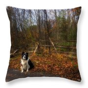 Fence With Moon Throw Pillow