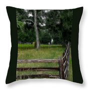 Fenced In Field Throw Pillow