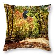 Fenced Path Through Autumn Forest - Blacksmith Fork Canyon - Utah Throw Pillow