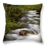 Fern Creek Horizontal Throw Pillow