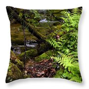 Fern Fallen Log And Stream Throw Pillow
