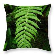 Fern Frond 0576 Throw Pillow
