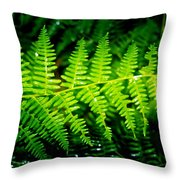 Fern II Throw Pillow