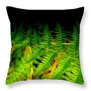 Fern IIi Throw Pillow