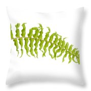 Fern Leaf Throw Pillow by Atiketta Sangasaeng