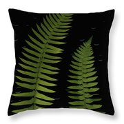 Fern Leaves With Water Droplets Throw Pillow