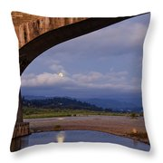 Fernbridge And The Moon Throw Pillow