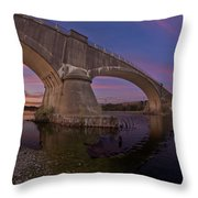 Fernbridge Dusk Throw Pillow