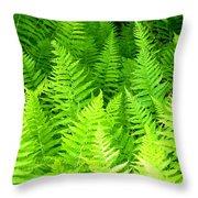 Ferns Galore Filtered Throw Pillow