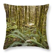 Ferns Sit On The Forest Floor Throw Pillow