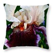 Festive Iris Throw Pillow