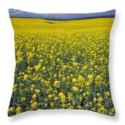 Field Of Canola Throw Pillow